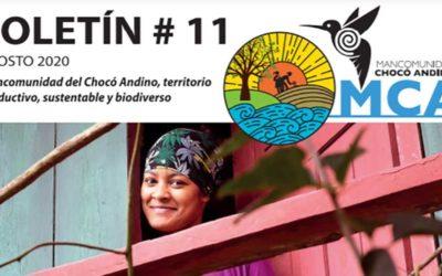 Boletín 11 de Mujeres rurales