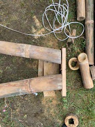 Corte del bambú