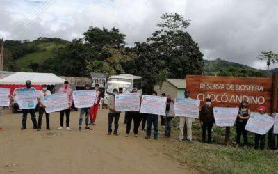 La lógica capitalista amenaza los últimos remanentes de bosques en el Chocó Andino de Pichincha.